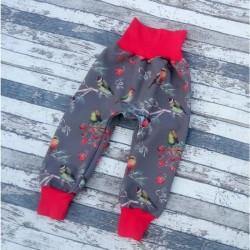Yháček zimní softshellové kalhoty PTÁČCI, vel. 80 a 98